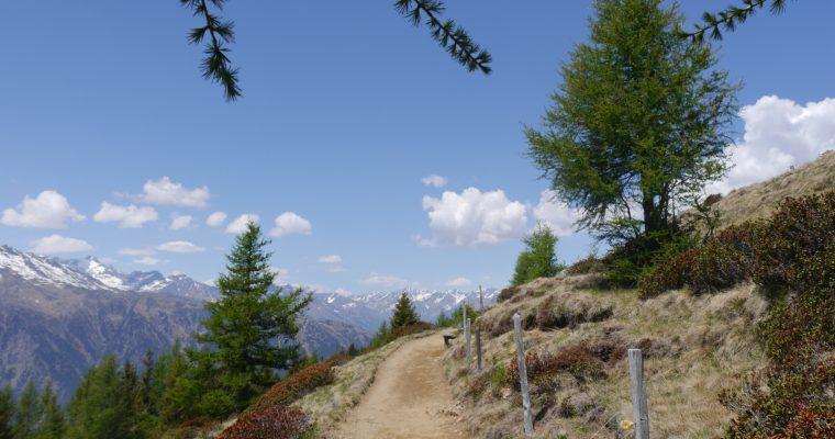 Schenna – Zurück nach Südtirol
