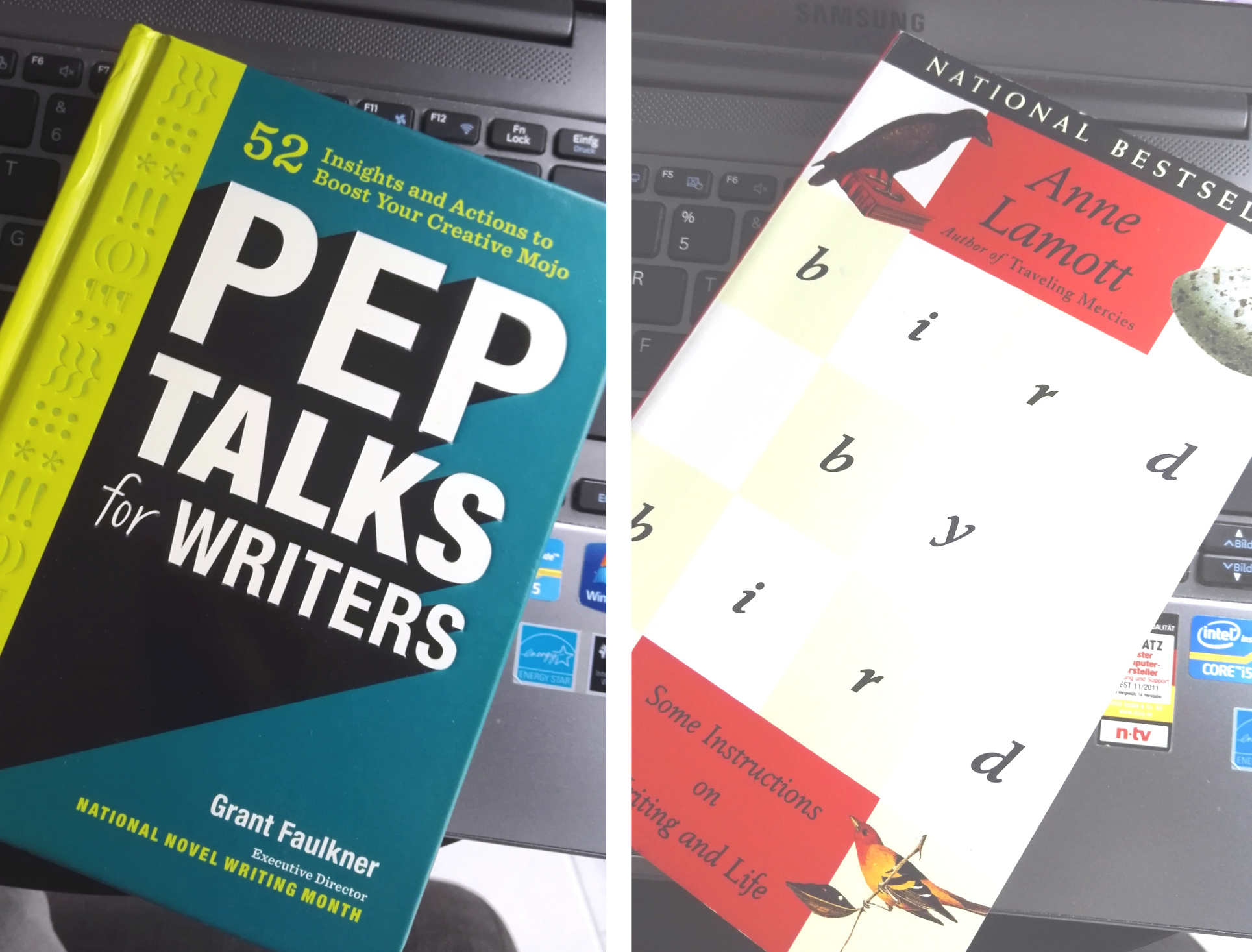 Bird by Bird und Pep Talks for Writers // 2 Buchbesprechungen